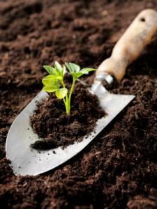 Testing_Soil